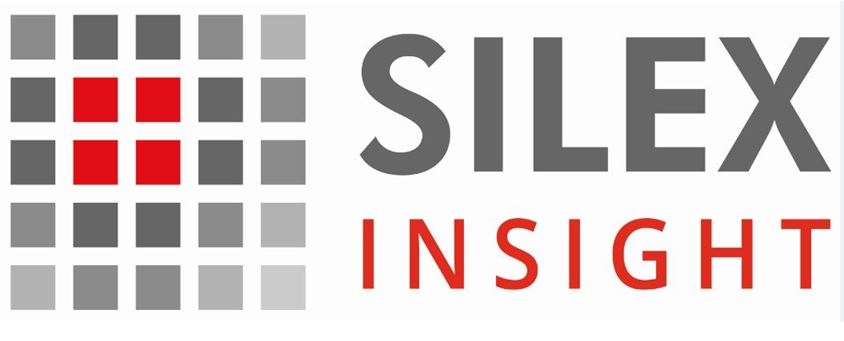 Security Enclave IP Based on RISC-V   Silex Insight